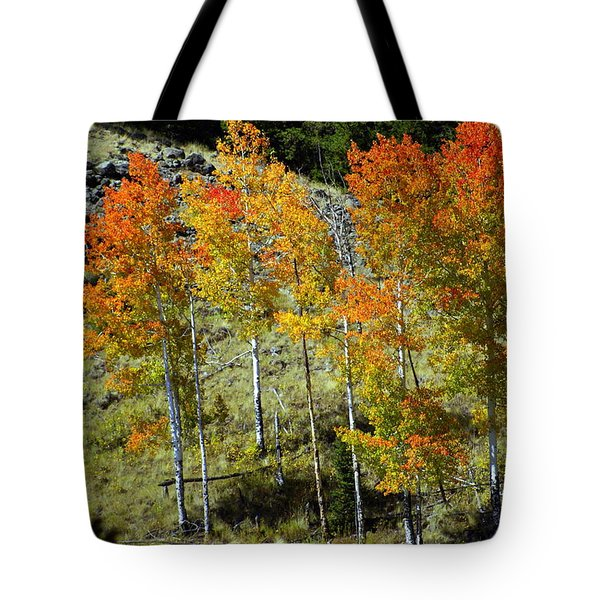 Fall In Colorado Tote Bag by Marty Koch