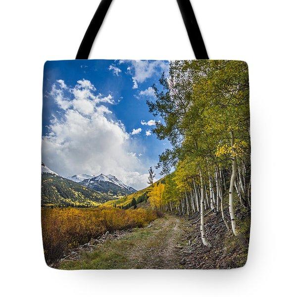 Fall In Colorado Tote Bag