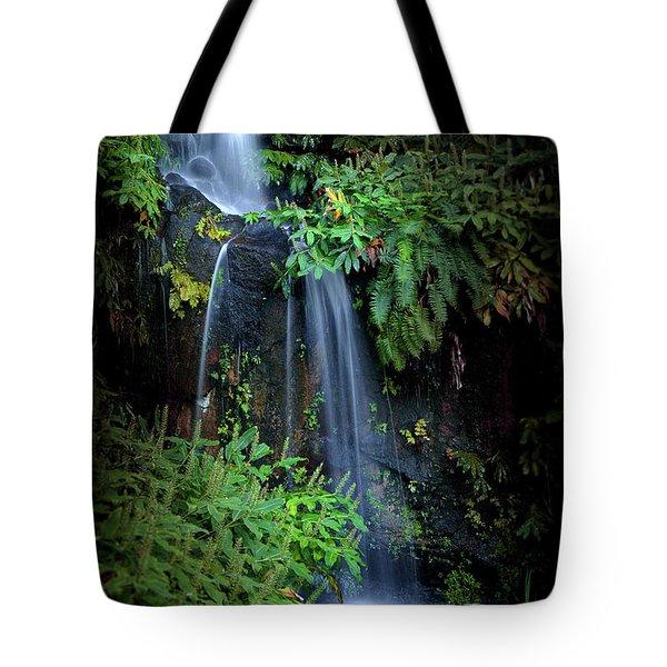 Fall In Eden Tote Bag
