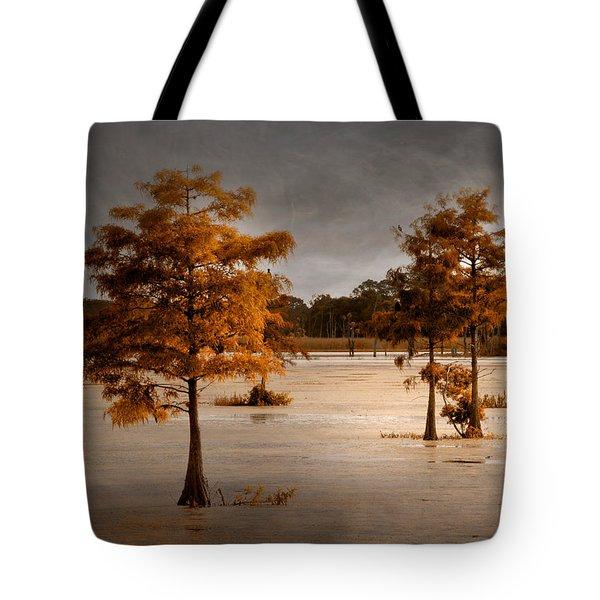 Fall In Florida Tote Bag
