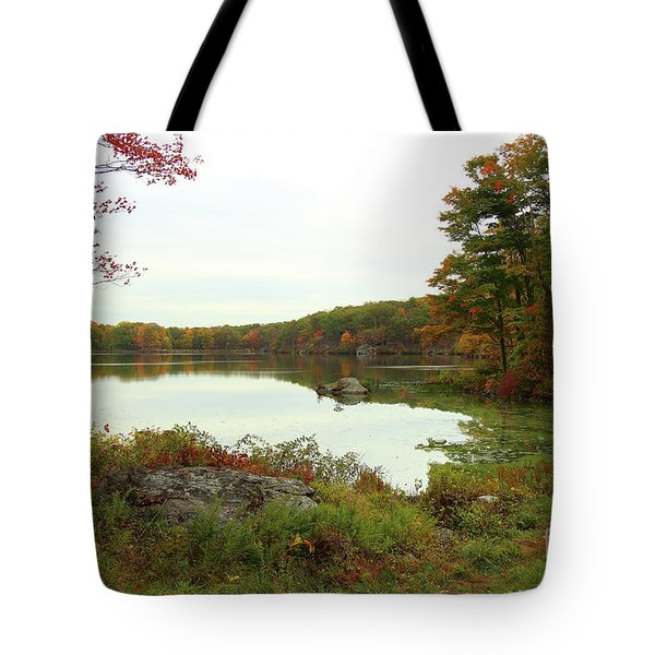 Fall In New York Tote Bag
