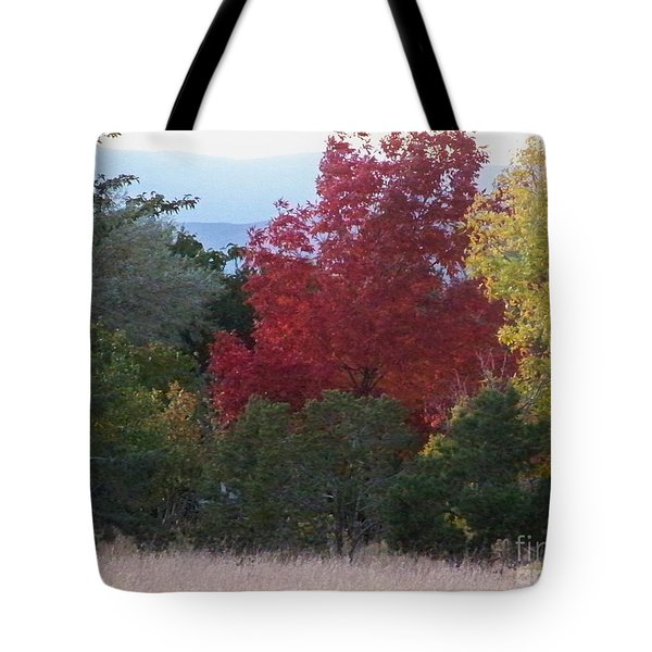Fall In Santa Fe Tote Bag by Brian  Commerford