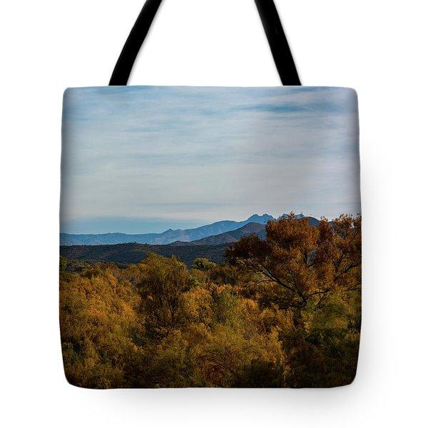 Fall In The Desert Tote Bag
