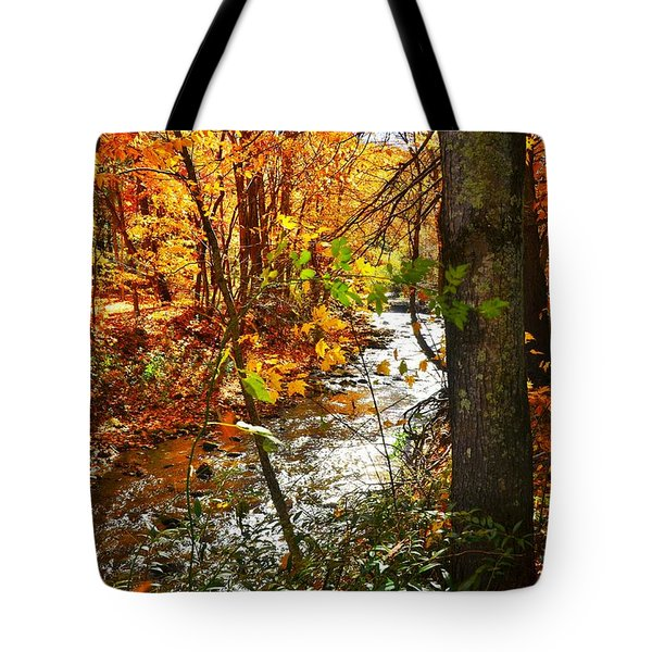 Fall In The Mountains Tote Bag