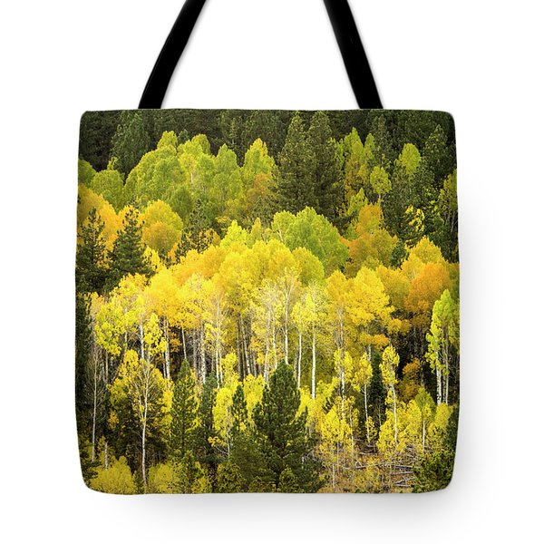 Fall In The Sierras Tote Bag