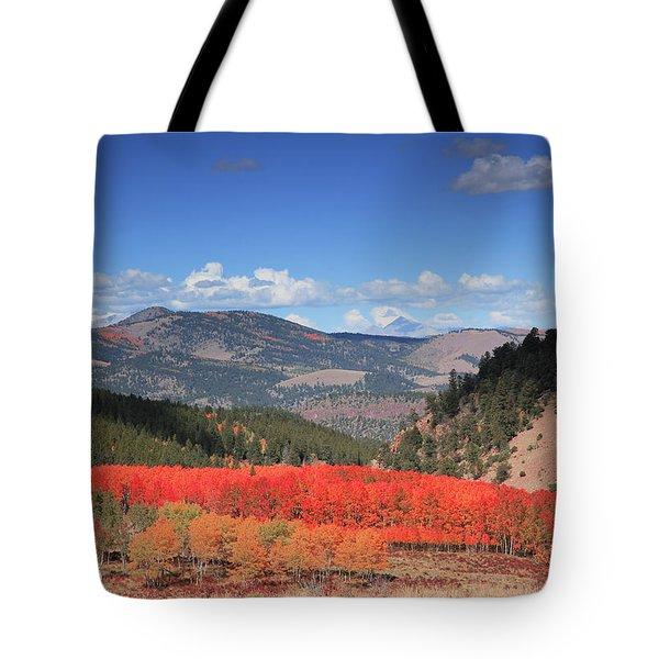 Fall In  Ute Trail  Tote Bag