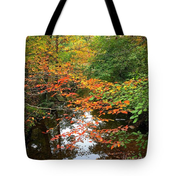 Fall Is In The Air Tote Bag by Rafael Salazar