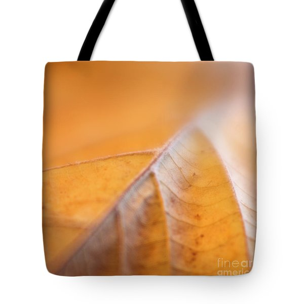 Tote Bag featuring the photograph Fall Leaf by Elena Nosyreva