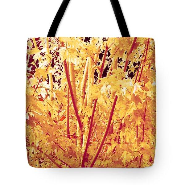 Fall Leaves #1 Tote Bag
