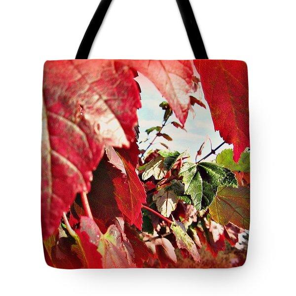 Fall Leaves #10 Tote Bag