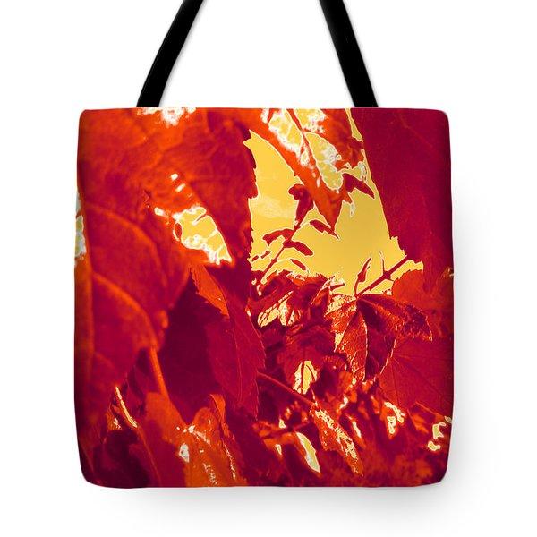 Fall Leaves #13 Tote Bag