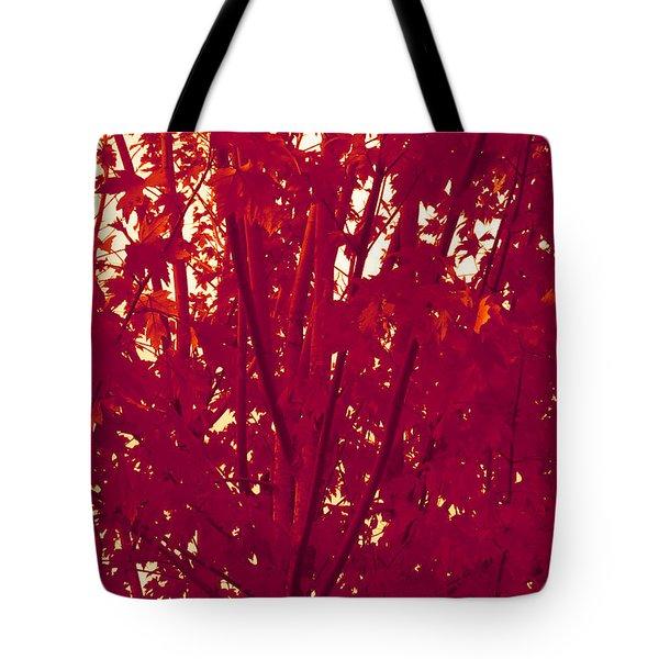 Fall Leaves #2 Tote Bag