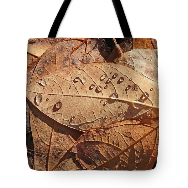 Fall Leaves And Dew 15 2017 Tote Bag