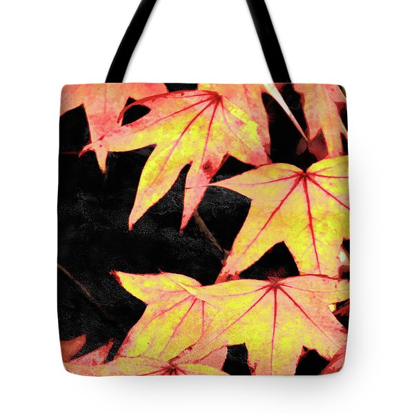 Fall Leaves Tote Bag by Robert Ball