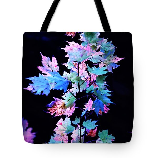 Fall Leaves1 Tote Bag