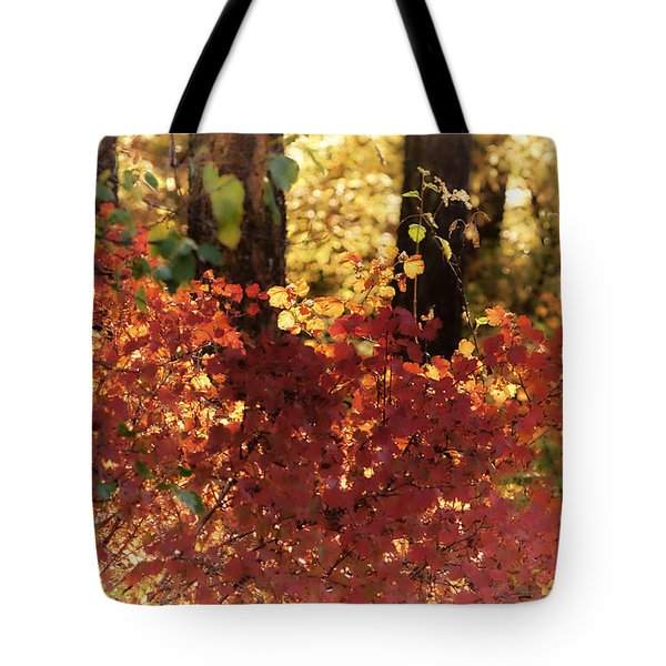 Fall Tote Bag by Loni Collins