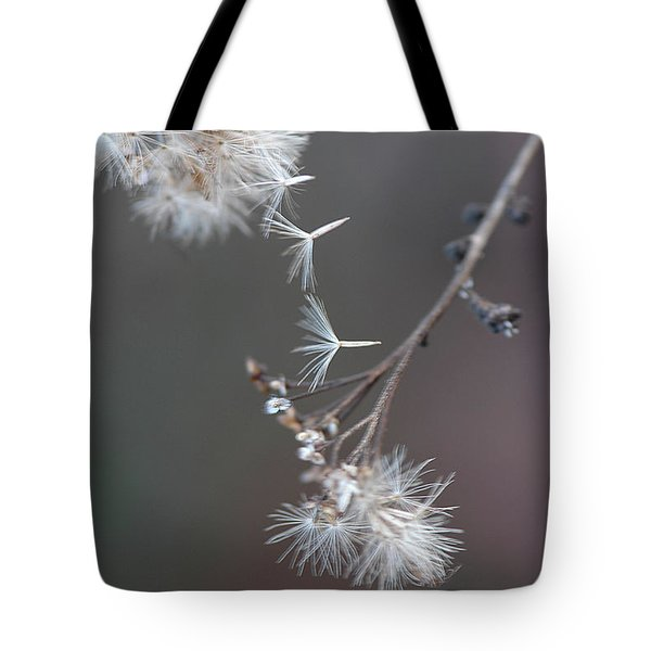 Tote Bag featuring the photograph Fall - Macro by Jeff Burgess
