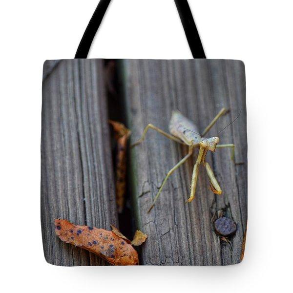 Fall Mantis  Tote Bag