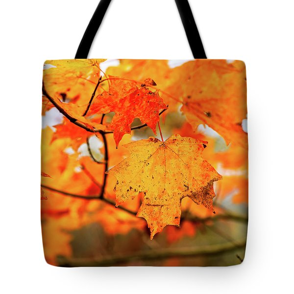 Fall Maple Leaf Tote Bag