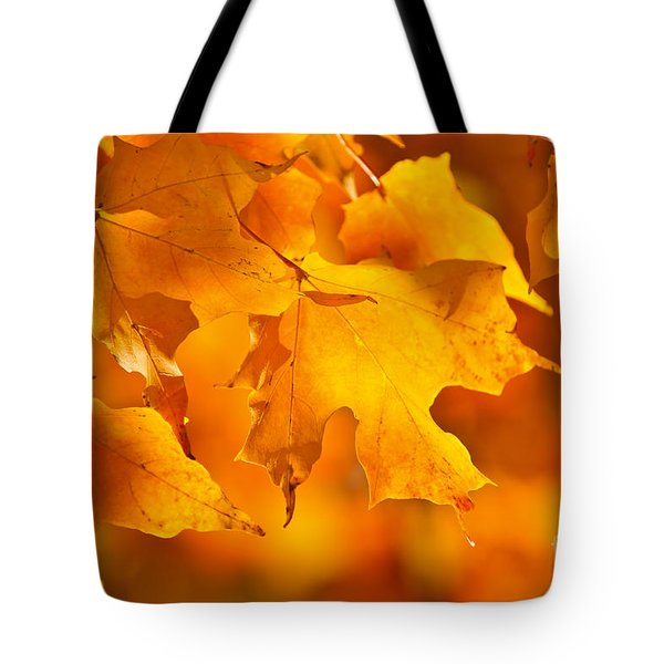 Fall Maple Leaves Tote Bag by Elena Elisseeva