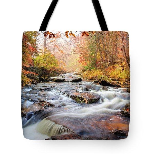 Fall Morning At Gunstock Brook Tote Bag by Robert Clifford