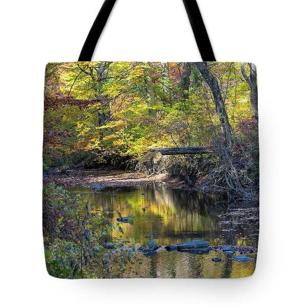 Fall Morning Tote Bag