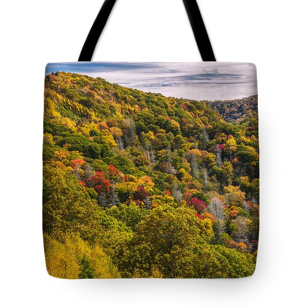 Tote Bag featuring the photograph Fall Mountain Side by Tyson Smith