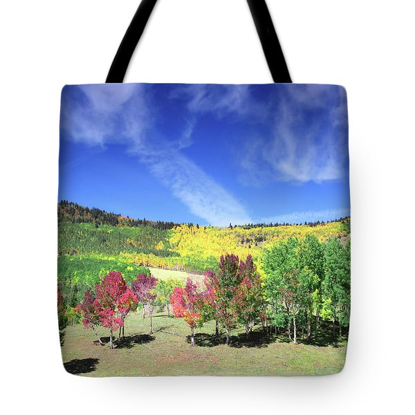 Fall On County Road 12 Tote Bag