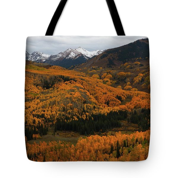 Fall On Full Display At Capitol Creek In Colorado Tote Bag