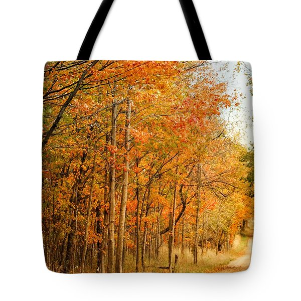 9012 - Fall On Murphy Lake II Tote Bag