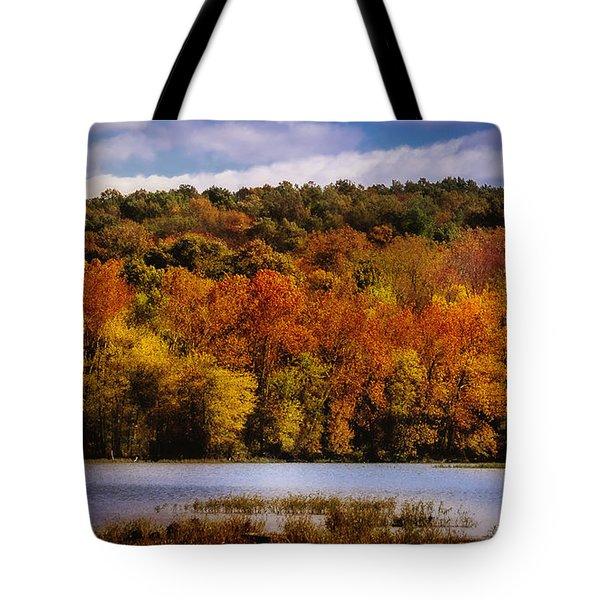 Fall On Springfield Lake Tote Bag