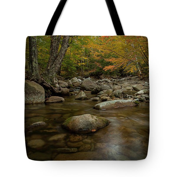Fall On The Gale River Tote Bag