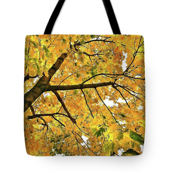 Fall On William Street Tote Bag