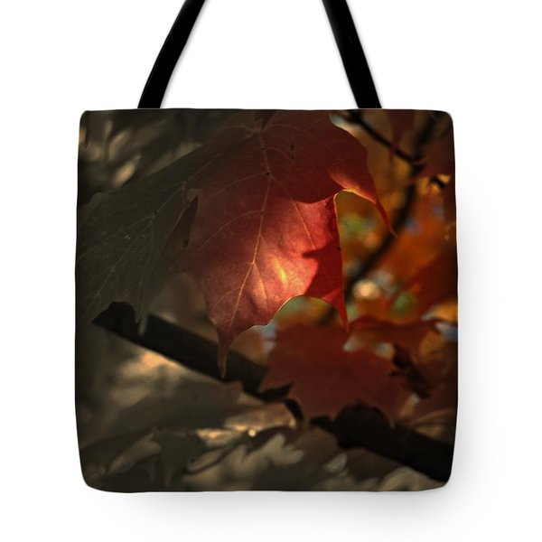Fall Or Not Tote Bag