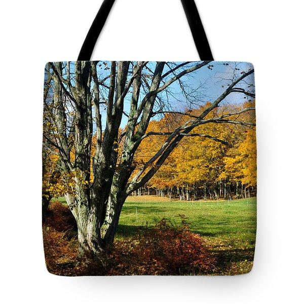 Fall Pasture Tote Bag