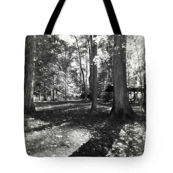 Fall Picnic Bw Painted Tote Bag