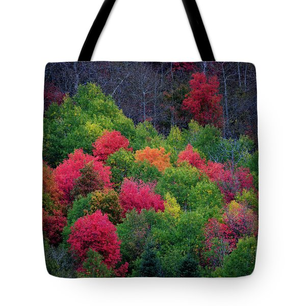 Fall Poppers Tote Bag