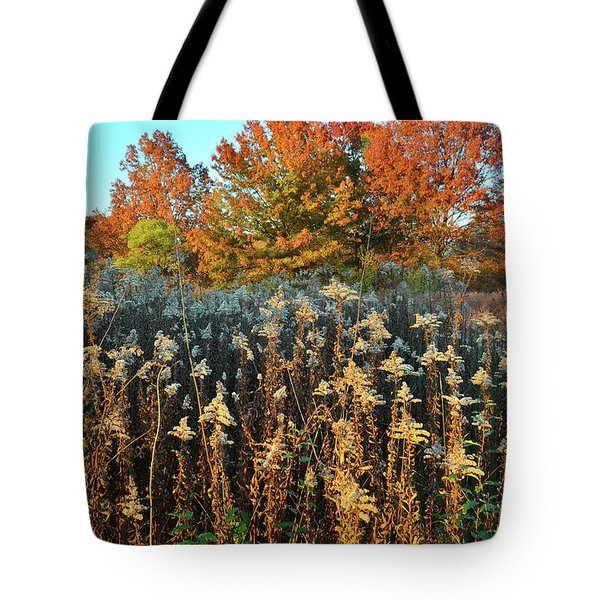 Tote Bag featuring the photograph Fall Prairie In Moraine Hills by Ray Mathis