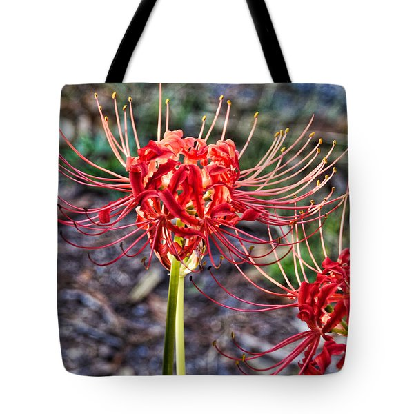 Fall Radiance Tote Bag
