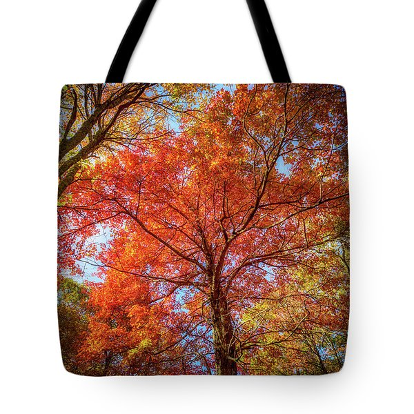 Fall Red Tote Bag