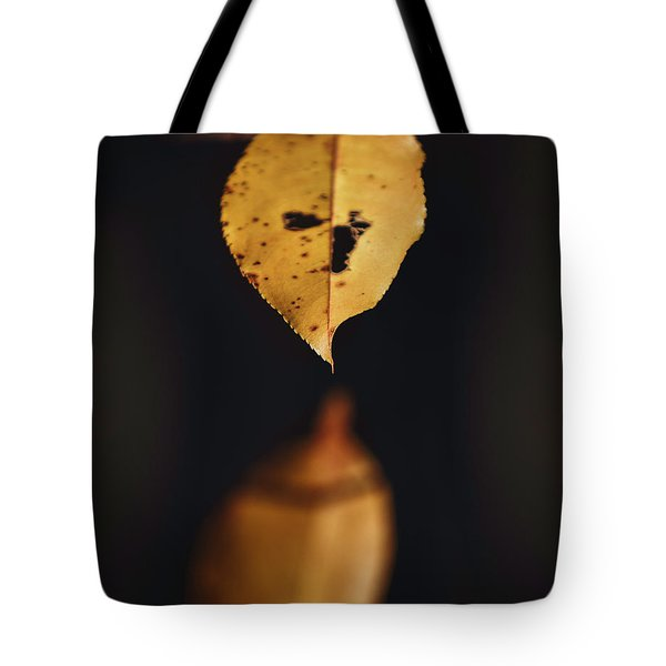 Fall Reflections Tote Bag by Eduard Moldoveanu