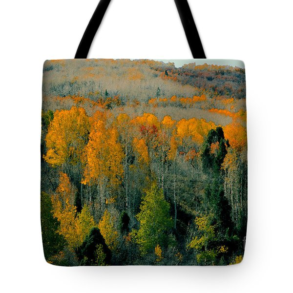 Fall Ridge Tote Bag by David Lee Thompson