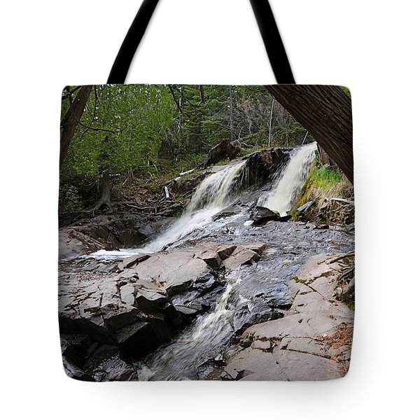 Tote Bag featuring the photograph Fall River View #2 by Sandra Updyke