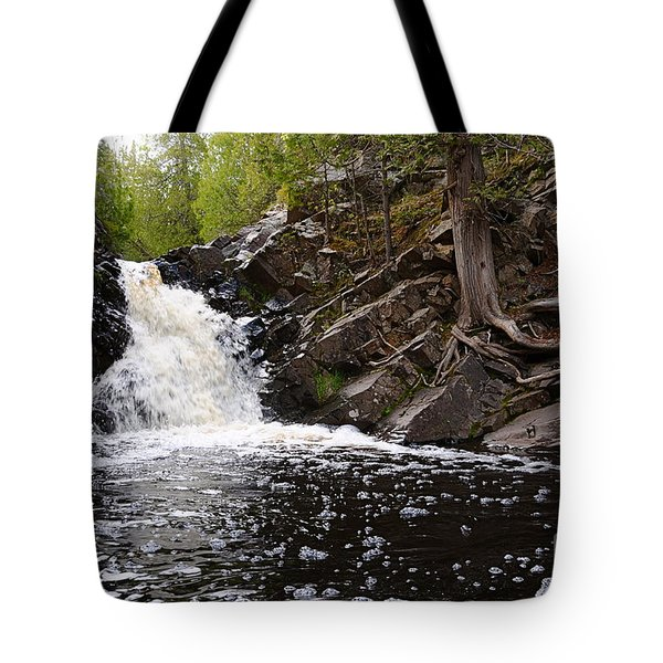Tote Bag featuring the photograph Fall River View by Sandra Updyke