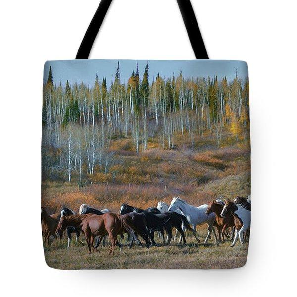 Fall Run Tote Bag