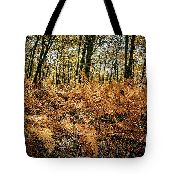 Fall Rust Tote Bag