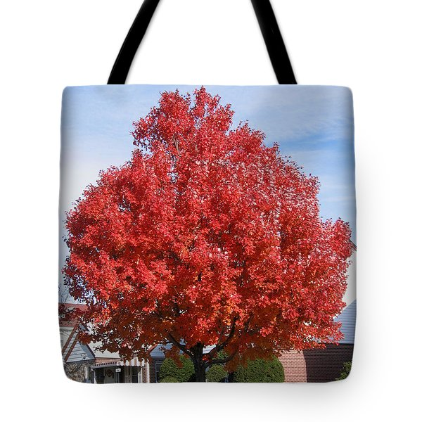 Tote Bag featuring the photograph Fall Season by Suhas Tavkar