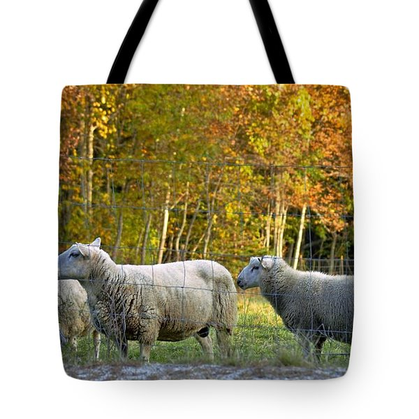 Fall Sheep Tote Bag