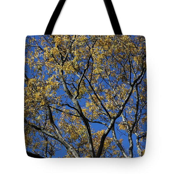 Tote Bag featuring the photograph Fall Splendor And Glory by Deborah  Crew-Johnson