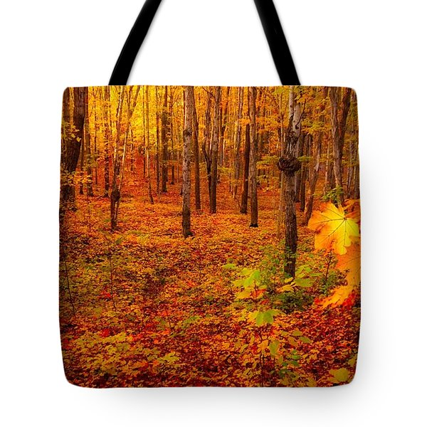 Fall Sugar Bush Tote Bag